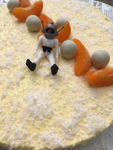 entremets,compotée,abricots,dacquoise,coco,mousse vanillée