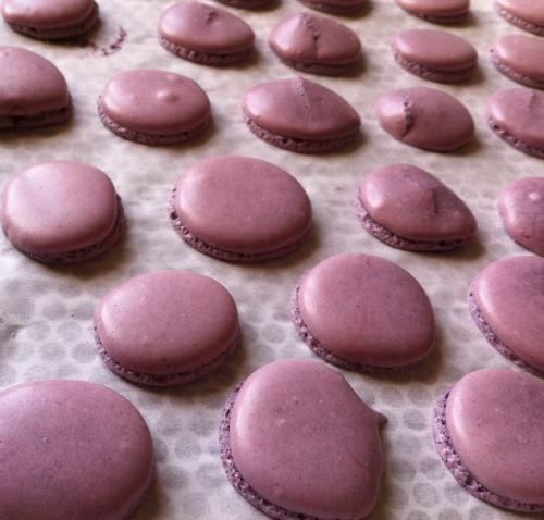 macaron,amateur,concours,vincent guerlais,karine bres,nantes,relais et dessert,ganache,tonka,noix,chocolat noir,valrhona